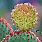 Fragile by taueva