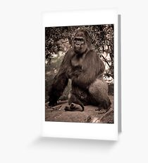 Just A Cuddly Guy In A Pensive Mood Greeting Card