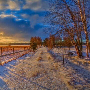 Winter Morning Light 6 by wekegene