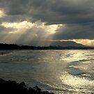 Byron Bay by Louise Linossi Telfer