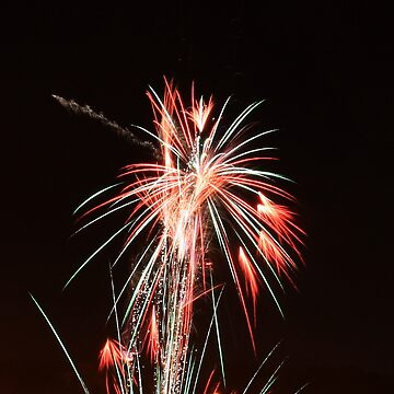 CFA Fireworks Convention #2 by janr34