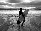 Scanning the Break by Andrew Simoni