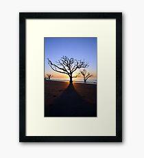 Botany Bay Sunrise Framed Print