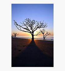 Botany Bay Sunrise Photographic Print