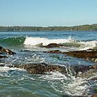 Pacific Rim National Park Reserve by AnnDixon