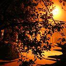 "Frightful Night - ""Through the Stalker's Eyes"" by Jennifer  Gaillard"