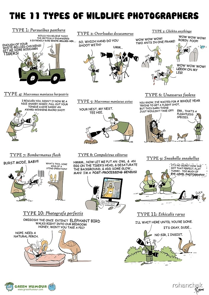 The 11 Types of Wildlife Photographers by rohanchak