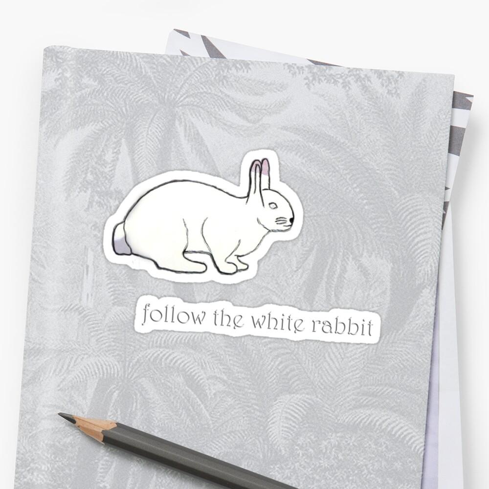 follow the white rabbit... by zoe trap