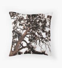 Gum Tree Kanmantoo Throw Pillow
