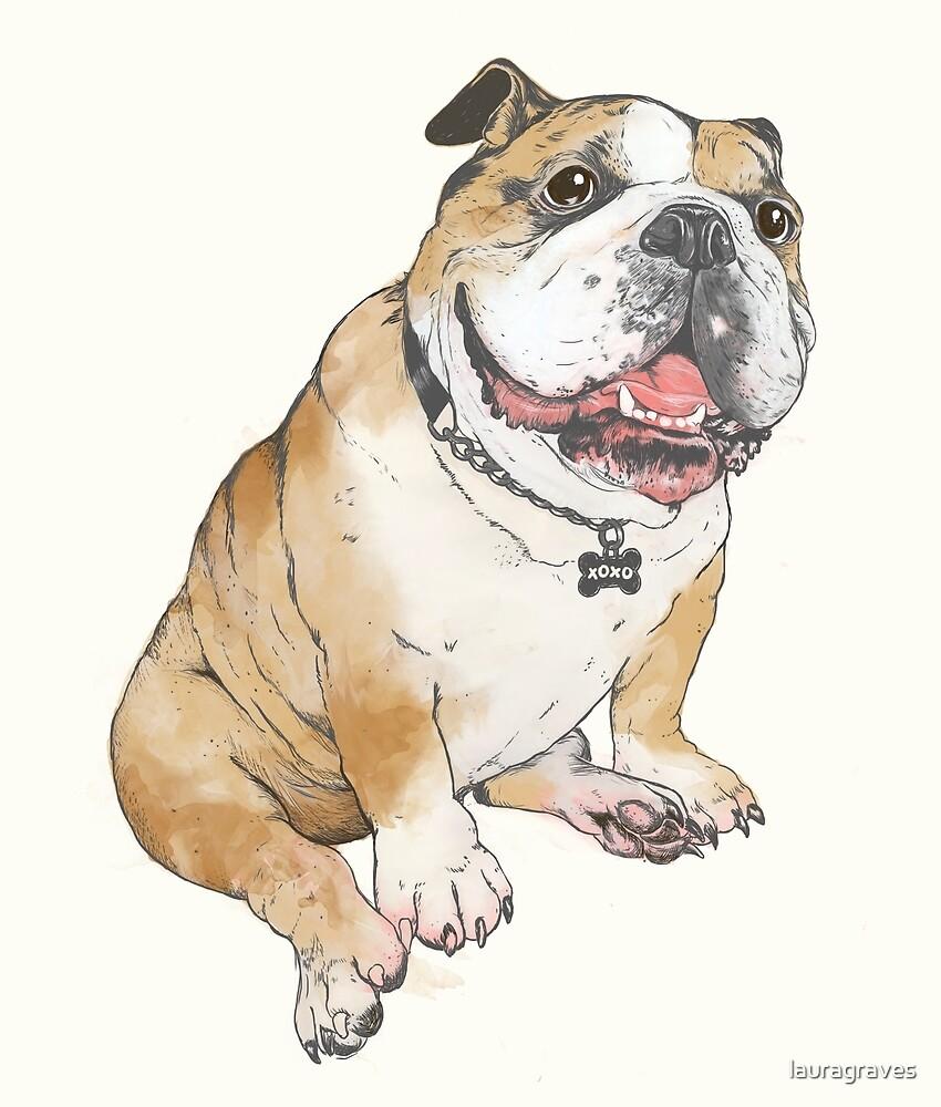 bulldog by lauragraves