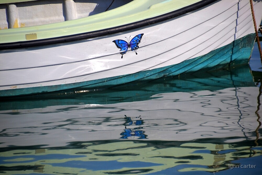Butterfly at Lyme Harbour, Dorset UK by lynn carter