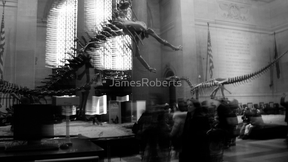at the Museum by JamesRoberts