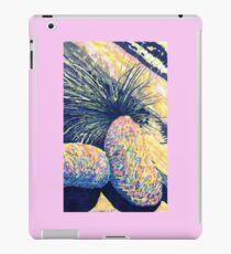 Dragoon Boulders  iPad Case/Skin
