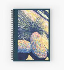 Dragoon Boulders  Spiral Notebook