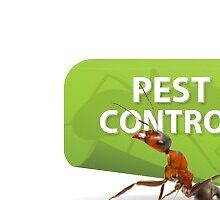 Choosing Best Pest Control Ottawa For Your Home by eliana11