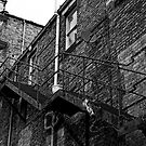 Back Alley Stairway; Newcastle by Paul Berry
