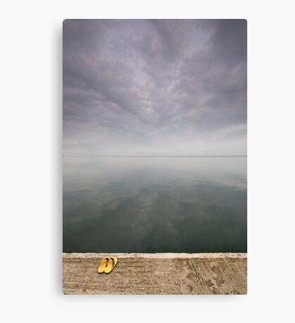 Poised at the edge of equilibrium Canvas Print