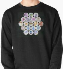 Beefriend Pullover Sweatshirt