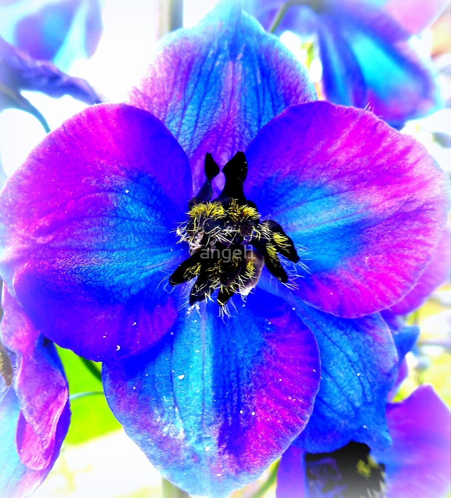 Delphinium Detail by ©The Creative  Minds