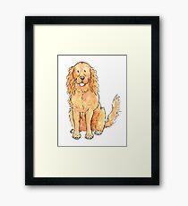 Winnie the cocker spaniel Framed Print