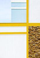 Euclidean in Yellow and Blue by George Parapadakis ARPS (monocotylidono)