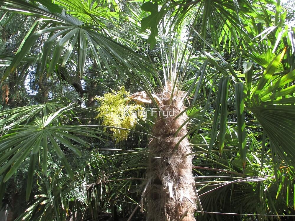 Flowering Palm Tree by Katy Fryd