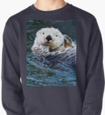Otterly blissful Pullover