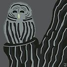 An Illustrated Life List: Barred Owl by dstrctdntrlst