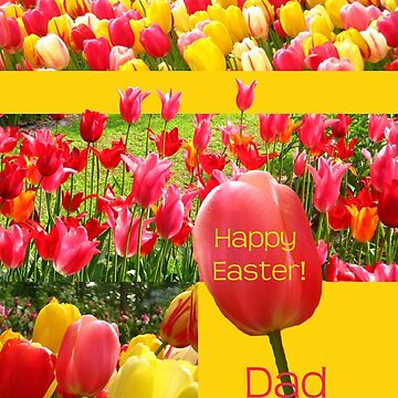 Happy Easter Dad - Spring Tulips by portosabbia