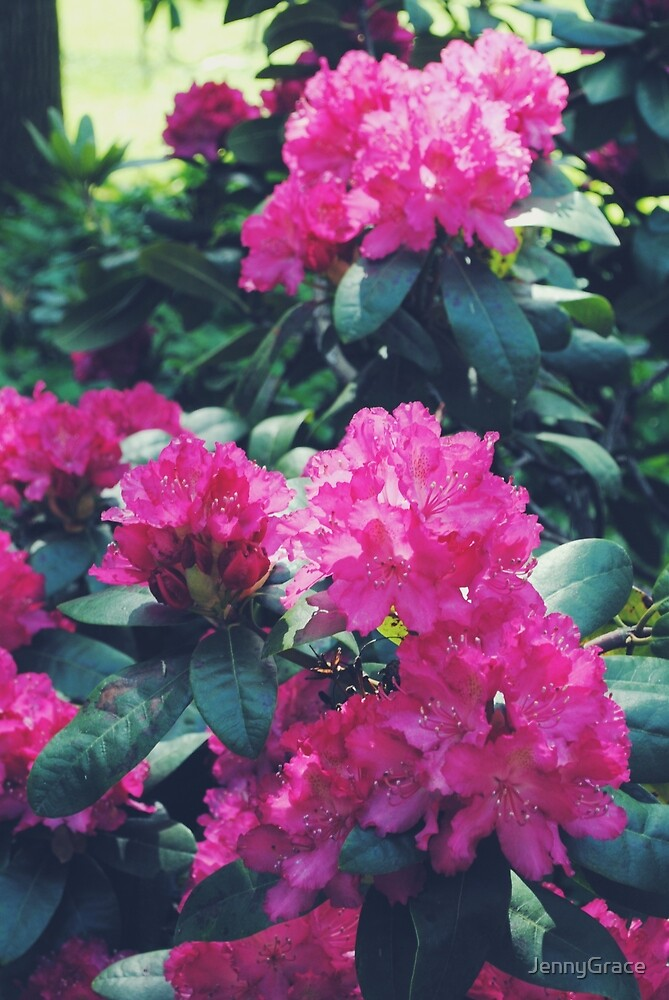 Flower Print Nature Tropical Summer by JennyGrace