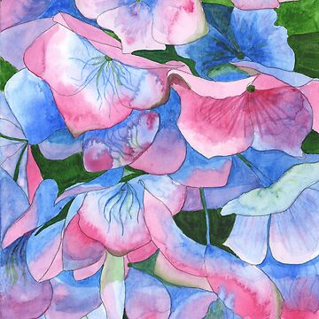 Pink and Blue Hydrangea Watercolour painting by esvb