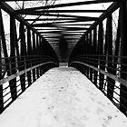 Bridge by Hunniebee