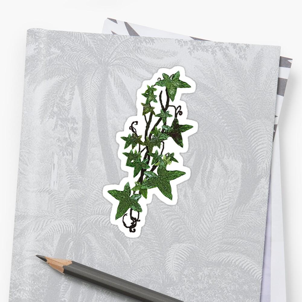 Faerie Ivy by Rebecca Tripp