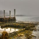 Low Tide by Sue  Cullumber