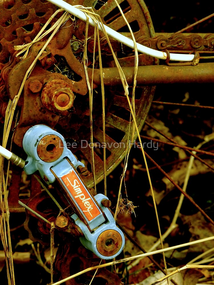 Neglect II....Bicycle by Lee Donavon Hardy