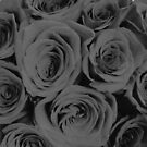 Black and White Romantic Roses  by AlexandraStr