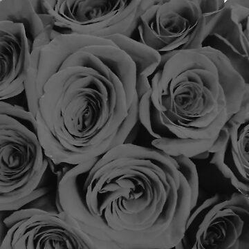 Black and White Romantic Roses  by AlexandraStr