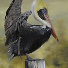 Golden Sunrise Pelican by Phyllis Beiser