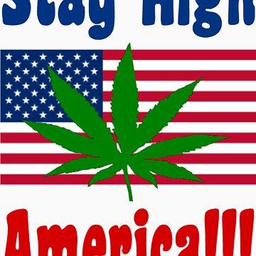 Stay High America!!! by kb1620