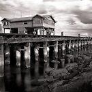 Princes Pier #2 by Christine Wilson