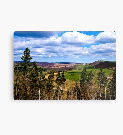 View of Pockley Moor. Metal Print