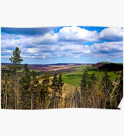 View of Pockley Moor. Poster