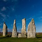 The Calanais Stones by Terry Mooney