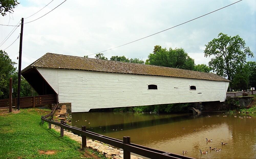 Elizabethton, TN, Covered Bridge, 2008 by Frank Romeo