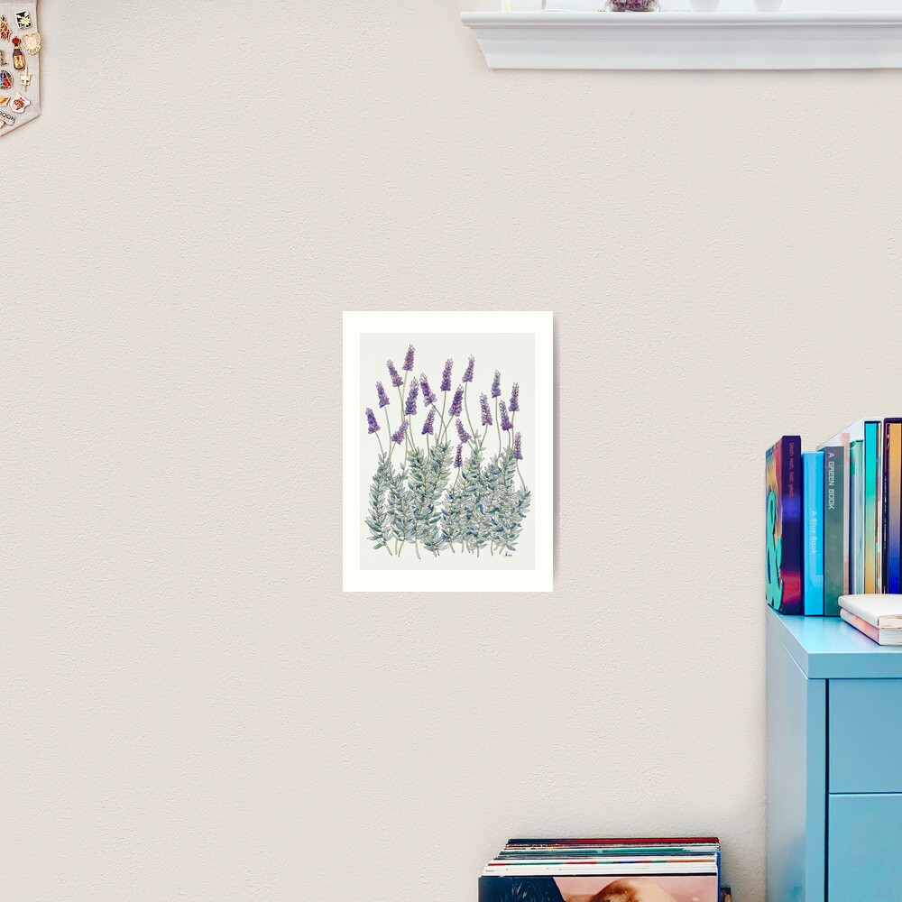 Lavender, Illustration Art Print