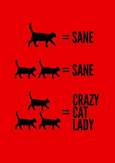 Crazy Cat Lady by fauxtauxgraphy