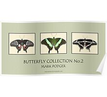 Butterfly Horizontal Collection 2 - Print Poster