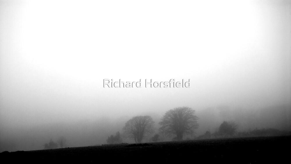 Foggy Trees by Richard Horsfield