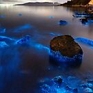 Bioluminescent Coastline - Sticks and Stones by Blackpaw  Photography