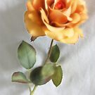 Peach Rose by Melody Ricketts